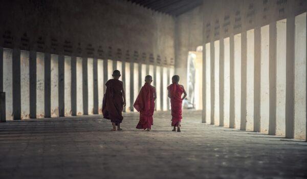 vanilla-monks
