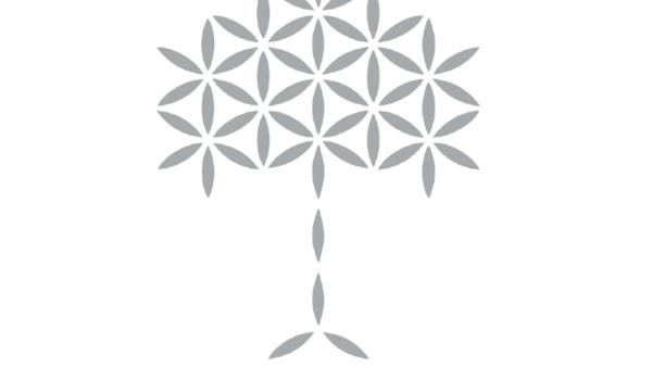 almazois-pita-2020-dorothetes-spiti-yoga-logo
